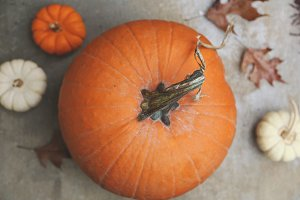 Pumpkins and leaves 1