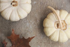 White Mini Pumpkins
