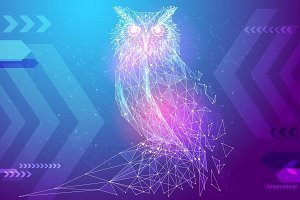 Owl bird low poly color