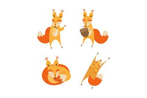 Cartoon Cute Squirrel Animal Set