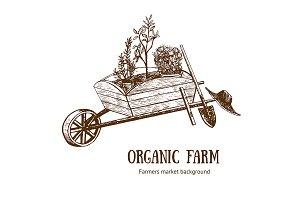 Garden Cart Organic Farm