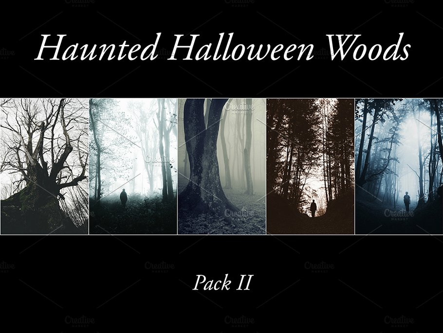 haunted halloween woods pack 2 nature photos creative market