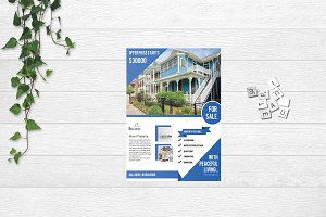Flyer For Real Estate Company V653
