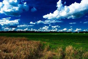 Ukrainian field landscape