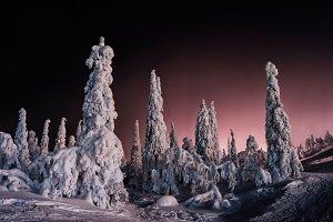 Horizontal vivid winter Finland landscape background backdrop