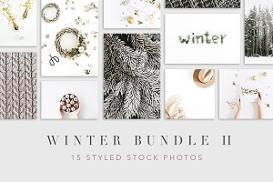 Winter Bundle 2