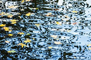 Nature background with water ripples