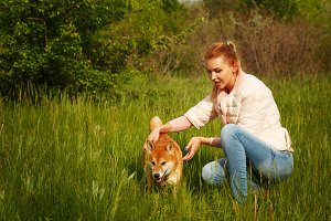 Shiba Inu dog and a girl on meadow