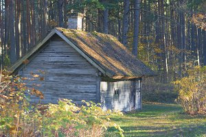Wooden house in the autumn forest