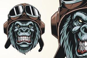 Monkey Pilot