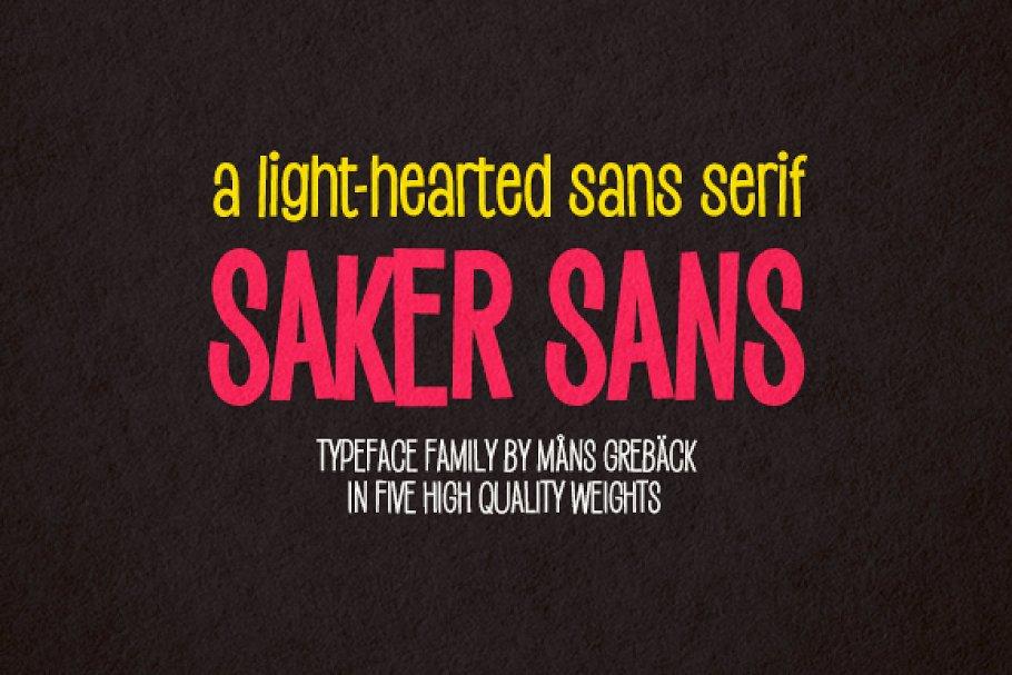 Best Saker Sans Vector