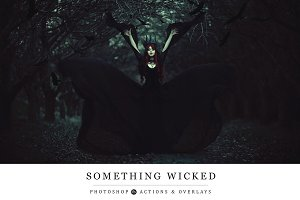Something Wicked Collection