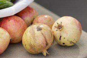 Pomegranate mollar of Elche