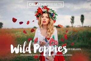 Wild Poppies Photo Overlays