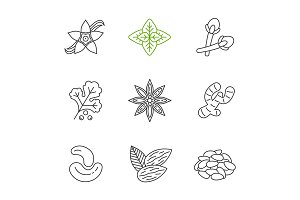Spices linear icons set