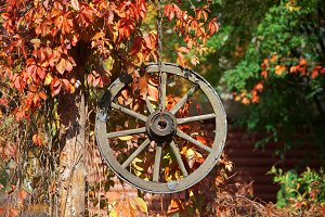 Autumn decor with wooden wheel