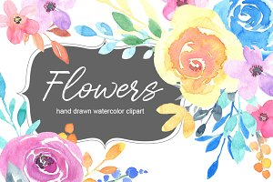 Watercolour summer garden flowers