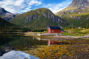 Traditional red rorbu cottages at the sea on Lofoten islands in Norway