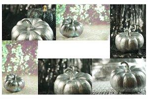 Silver Pumpkin Multipack