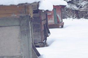 Beehives in winter 1.jpg