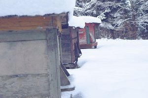Beehives in winter 2
