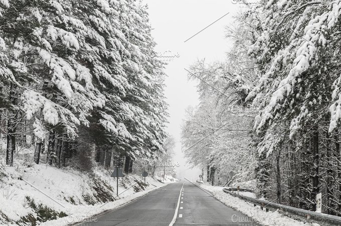 Rural road in winter. Trees and snow - Nature