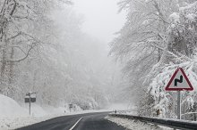 Rural road in winter. Trees and snow