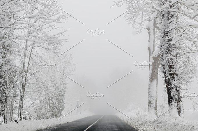 Rural road in winter. Trees and snow - Photos