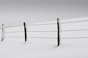 Fenced field covered by the snow