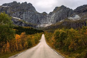 Scenic road on Lofoten islands in Norway on a sunny autumn day