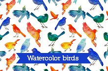 Watercolor birds