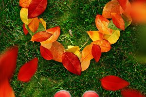 high angle view of woman in red rubber boots look down on heart shapes autumn leaves on green grass