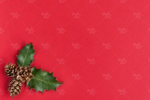 Christmas stock photography #5966