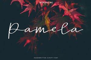 New! Pamela | Script Font