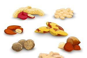 Nuts decorative icons set