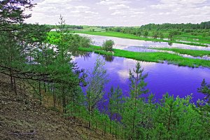 The valley of the Siberian river Konda