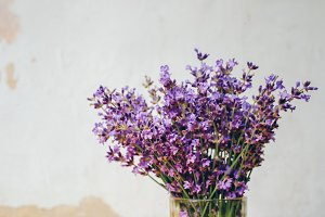 Bouquet of lavender, aromatherapy
