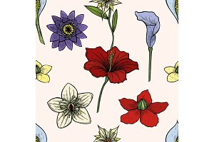 Vector vintage seamless floral pattern. Herbs and wild flowers. Botanical Illustration engraving style. Colorful