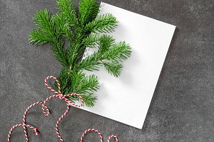 Christmas tree branch Paper