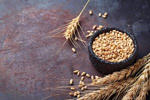 Wheat grains and spikelets on rusty background