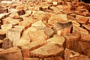 Rustic Fire Wood Pile