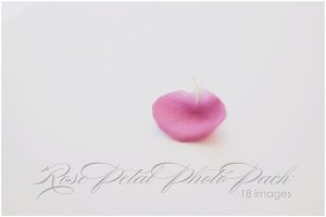Rose Petal Photo Pack