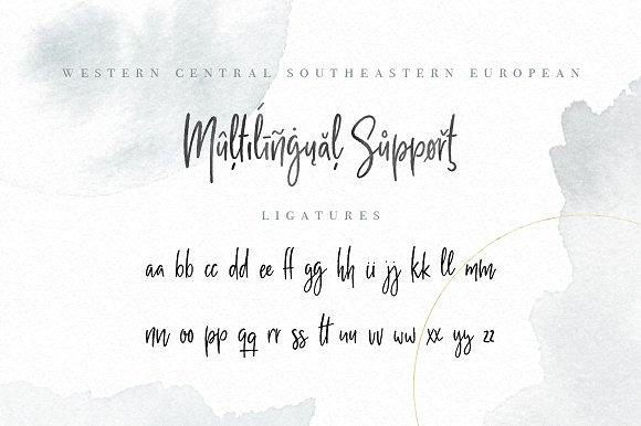 Milano Sky Handwritten Script Font Fonts Creative Market