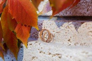 wedding rings on a stone
