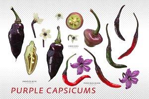 Purple Capsicums