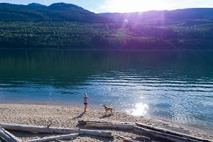 Woman playing with dog on the shore of the lake