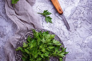 Fresh parsley on gray concrete background