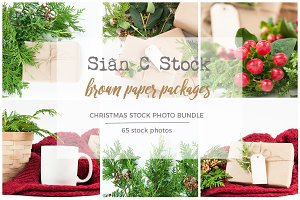 Brown Paper Packages Photo Bundle