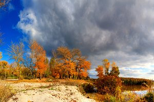 Autumn landscape - trees with colored leaves and dark clouds
