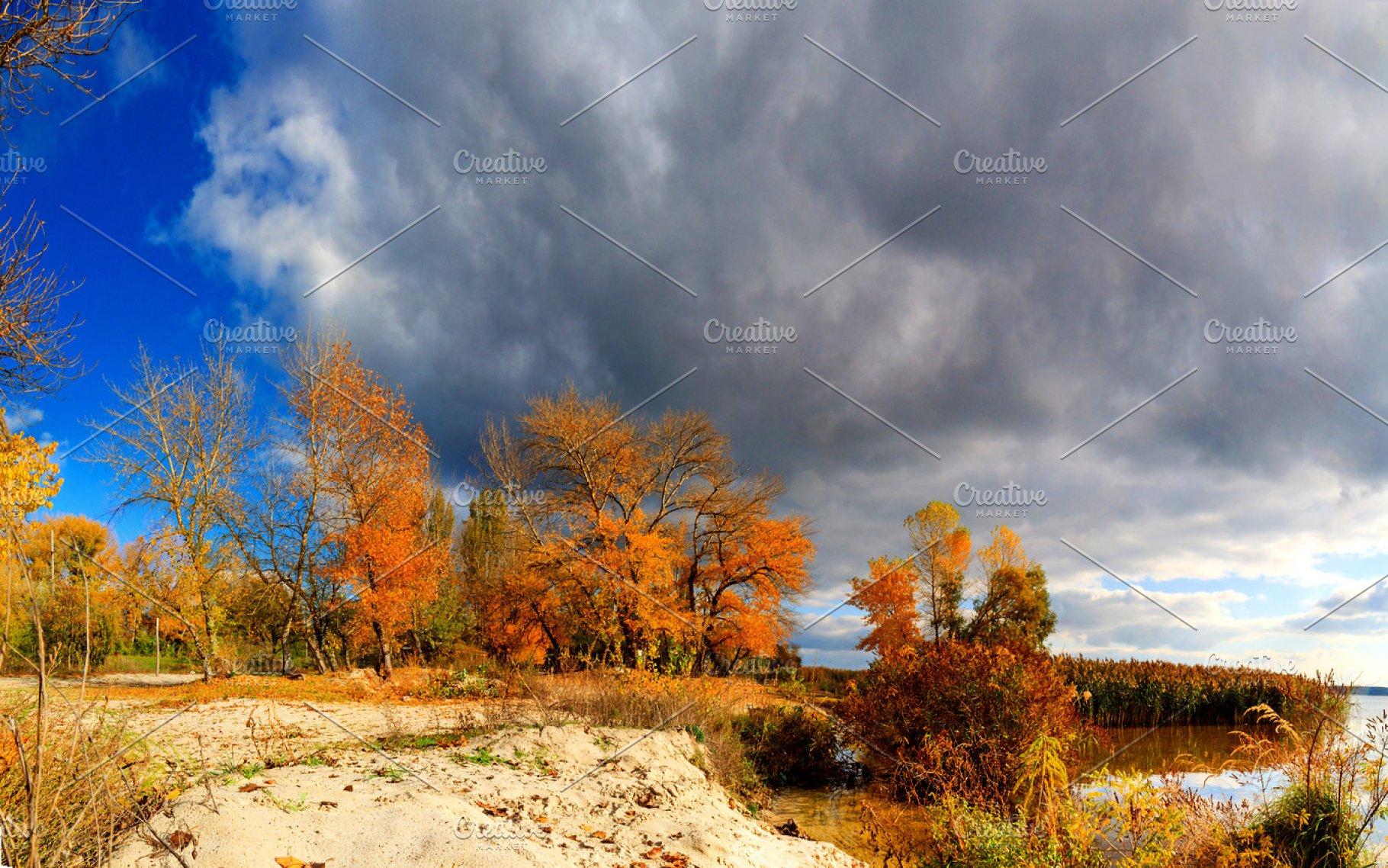 Autumn Landscape Trees With Colored Leaves And Dark Clouds